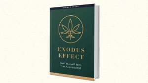 The-Exodus-Effect